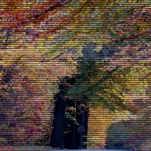 Henripont en automne