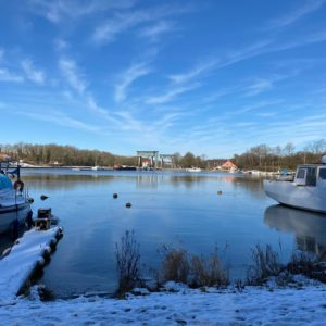 Matin_d_hiver_3 - Ittre_hiver_2021_VM_-27