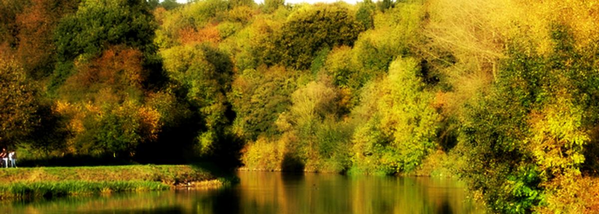Le vieux canal en automne