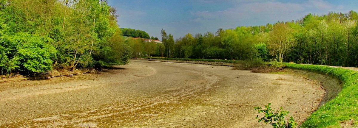 Le vieux canal en 2011