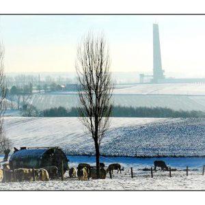 Henripont en hiver